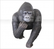 Gorilla with offpsring 03